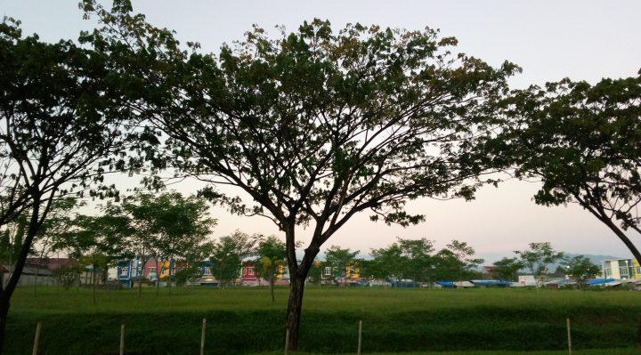 hasil foto Luna G