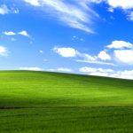 Kisah Cinta dibalik Wallpaper Bliss milik Windows XP