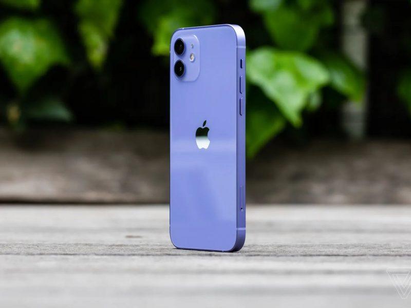 iphone 12 warna purple